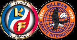 logo KF DKI